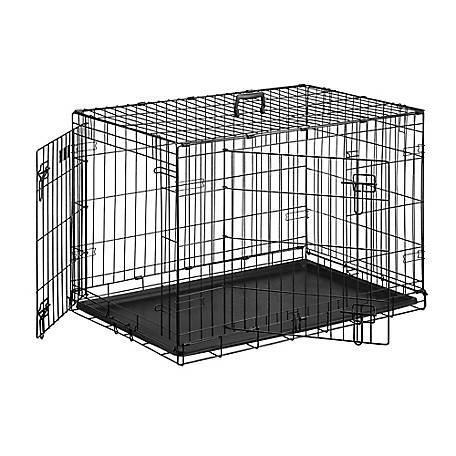 Crate Canine Instruction