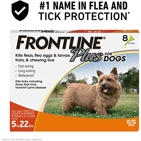 Recommendations on Acquiring Frontline Plus for Canines Cheap