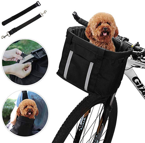 The Best Dog Baskets & Carriers for Bikes (Reviews)