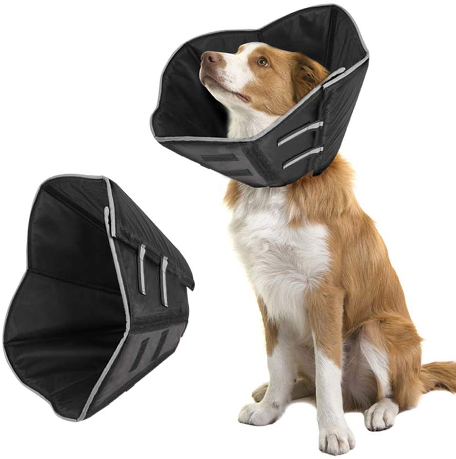 The Cone Collar For Canine