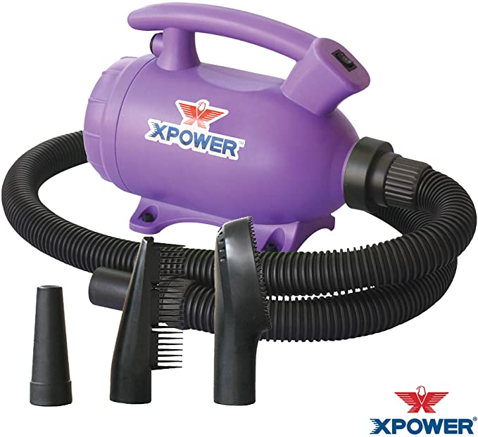The Best Dog Hair Dryers (Reviews)