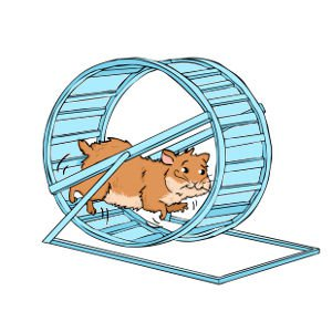 Hamster Care: exercise